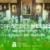 Inscriptions et consignes pour les messes dominicales